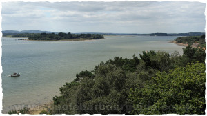 Brownsea Island, Poole Harbour, Poole, Dorset