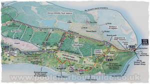 Brownsea Island Map